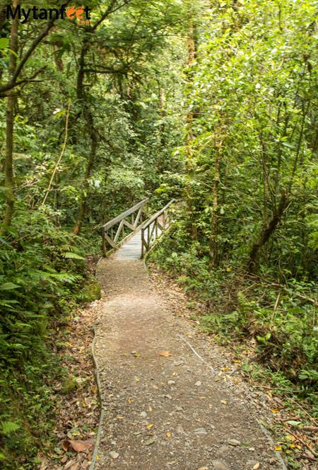 Hiking Monteverde Cloud Forest Reserve - sendero nubloso