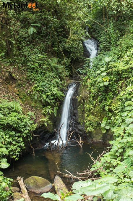 Hiking Monteverde Cloud Forest Reserve - waterfall