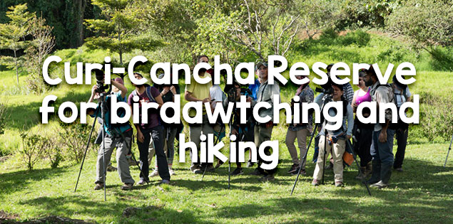 curi-cancha reserve featured