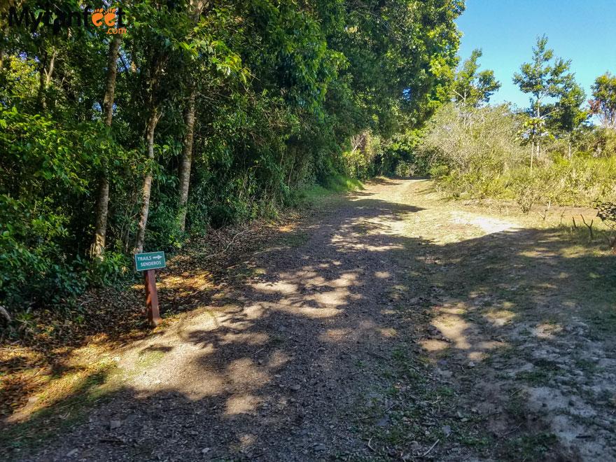 curi cancha reserve - main road