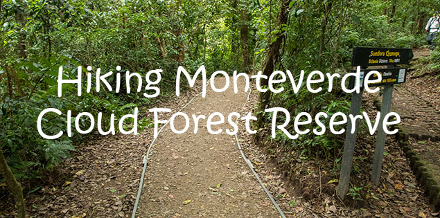 hiking monteverde cloud forest reserve
