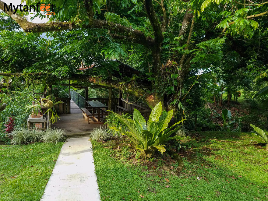 Airbnb in Arenal - backyard path
