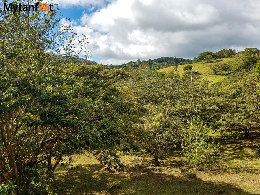 Airbnb in Monteverde - las marias cabinas
