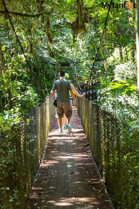 La Marta Wildlife Refuge - hanging bridge
