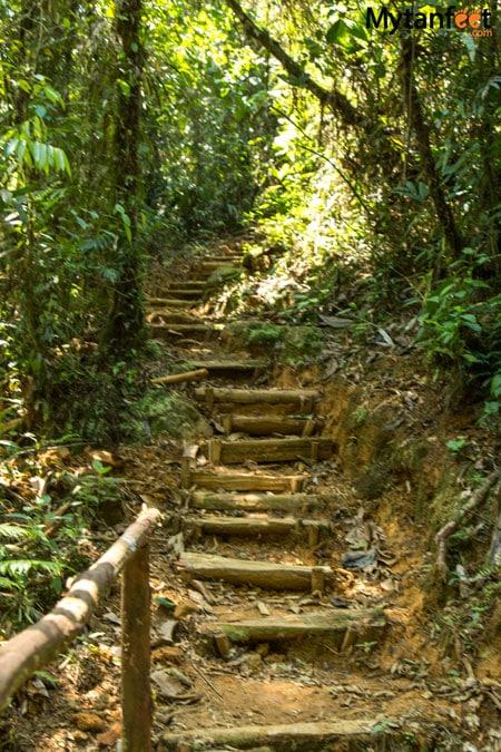 La Marta Wildlife Refuge - steps