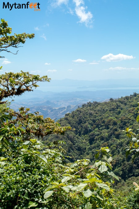 The Monteverde Cloud Forest Reserves - Children's Eternal Rain Forest, Monteverde and Santa Elena Cloud Forest Reserve