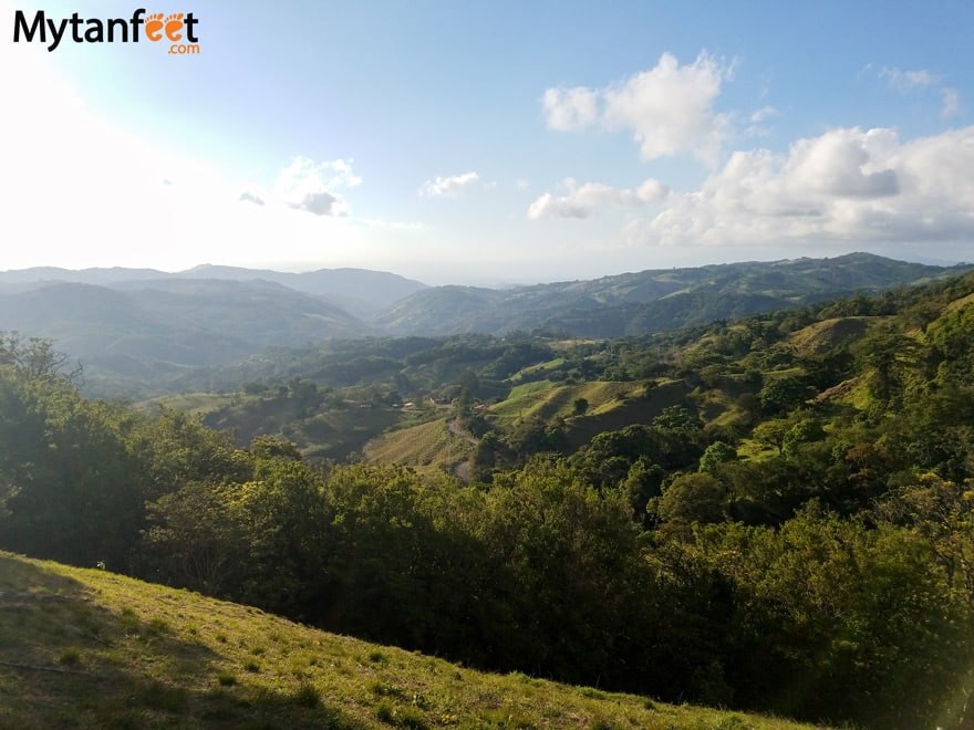 airbnb in monteverde toucan paradise finca modelo