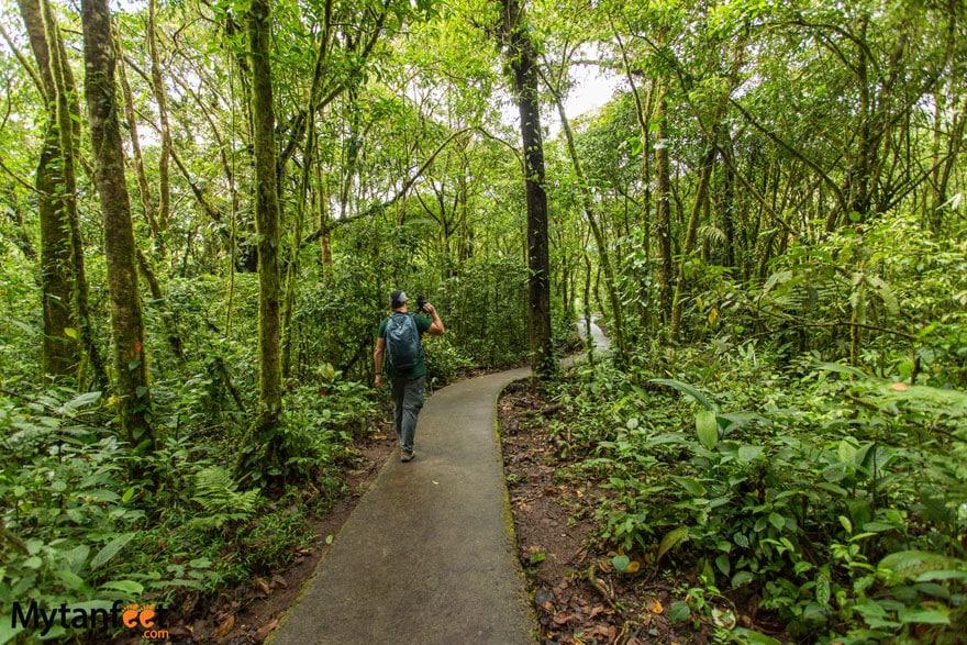 Rio Celeste trail