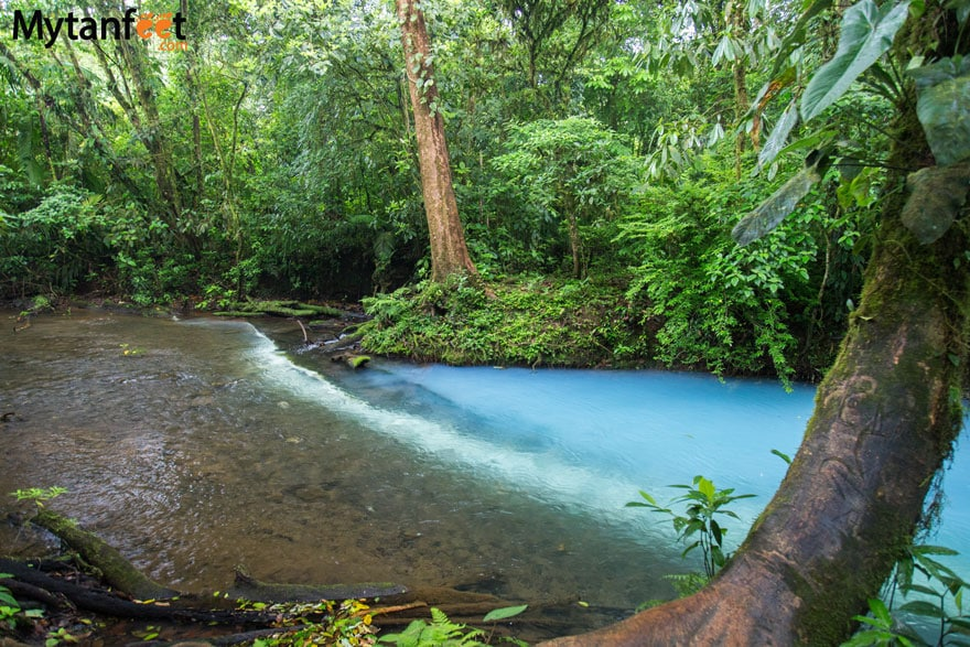 Rio Celeste Costa Rica - the joining of two rivers