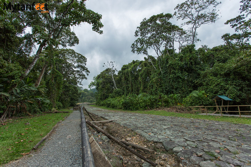 guayabo national monument path