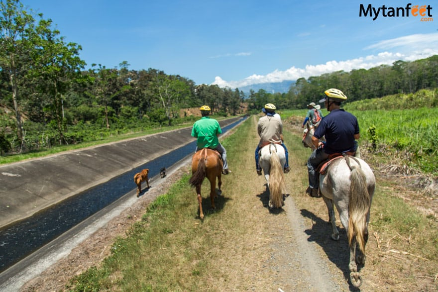 horseback riding in turrialba trail