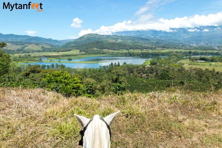 things to do in turrialba - horseback riding