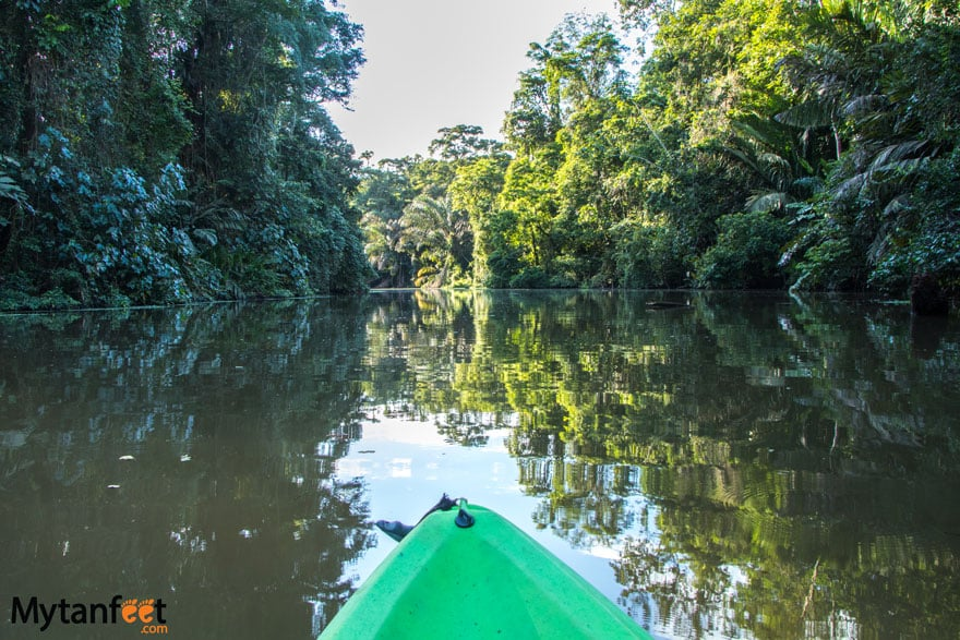 Two weeks in costa rica itinerary - Tortuguero national park kayaking