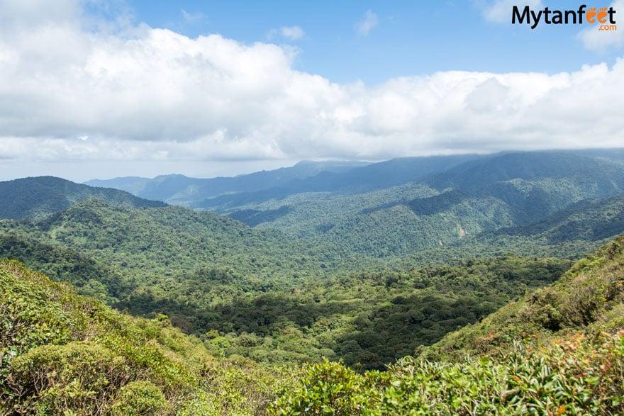 monteverde or arenal - monteverde cloud forest