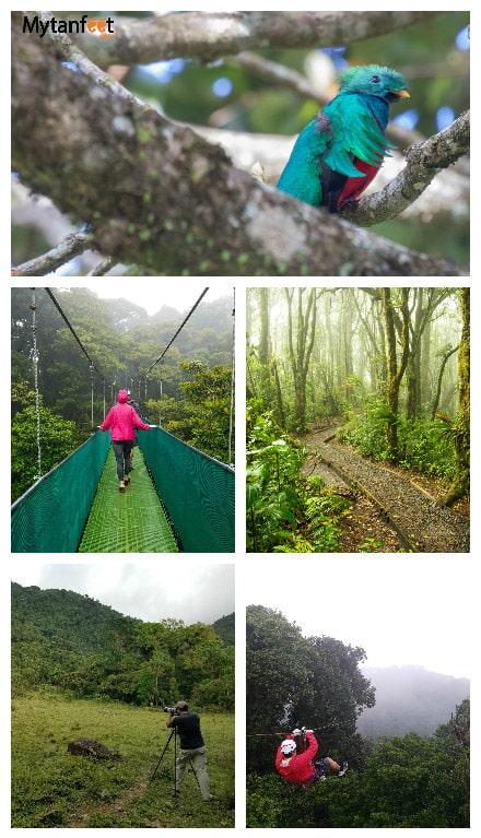 monteverde or arenal - things to do in Monteverde