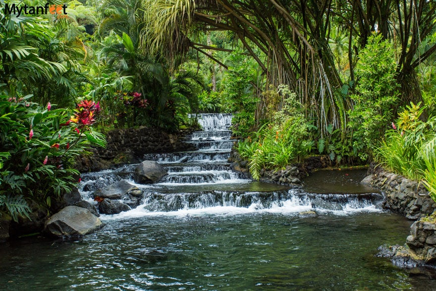 Arenal hot springs - Tabacon hot springs Costa Rica