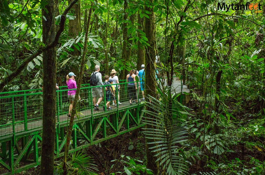 Mistico Arenal Hanging Bridges - guided walk