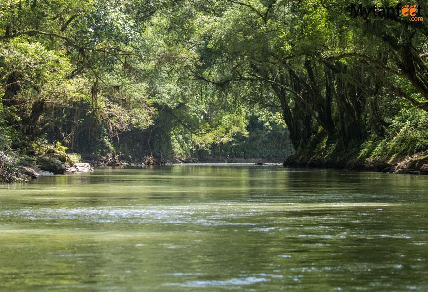 RIo-Penas-Blancas-Safari-Float