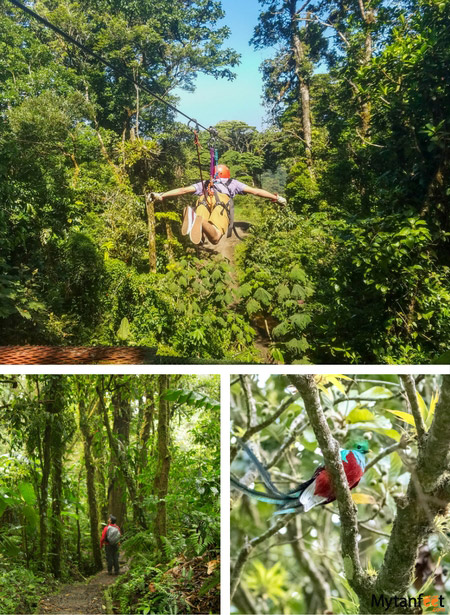arenal and monteverde itinerary - monteverde things to do