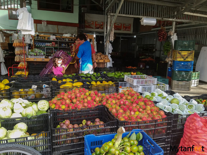 Eating Vegetarian in Costa Rica - farmers market
