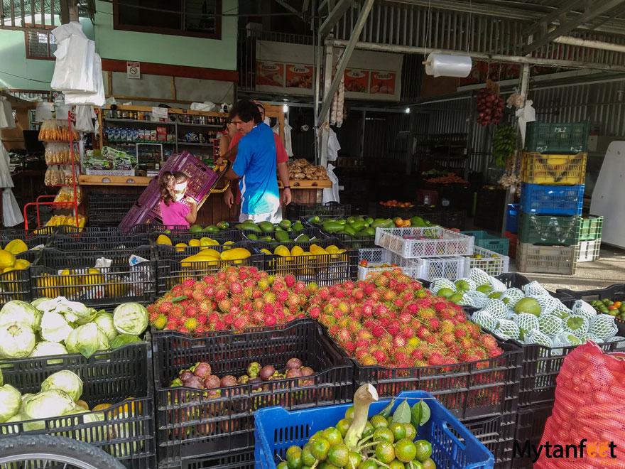 Eating Vegetarian in Costa Rica - farmers market