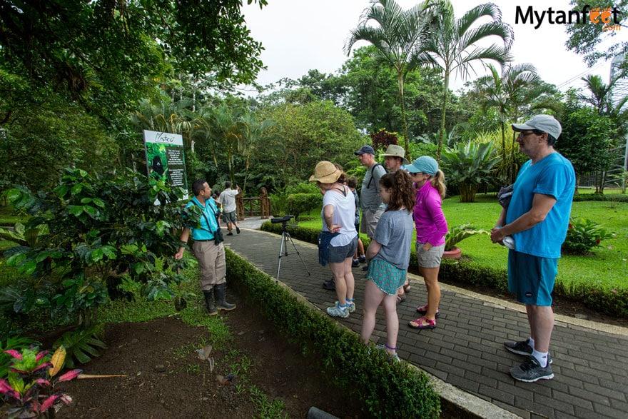 hiring a guide in Costa Rica - hanging bridges