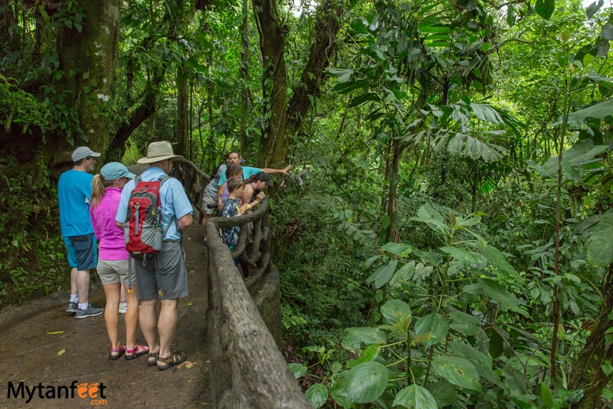things to do in Costa Rica with kids - nature walks