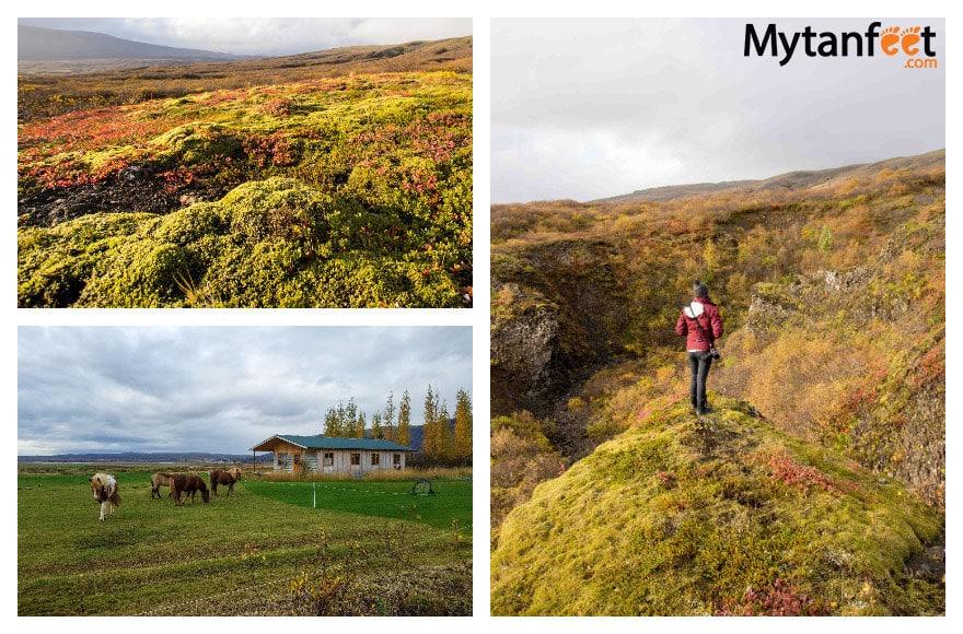 One week in Iceland by camper van - Airbnb