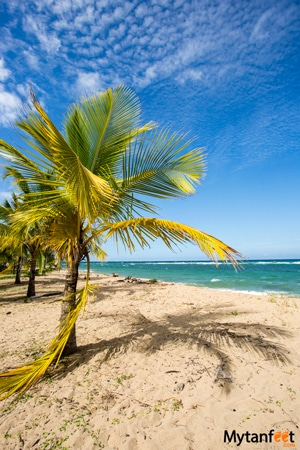 Differences between Caribbean and Pacific coast of Costa Rica - Playa punta uva