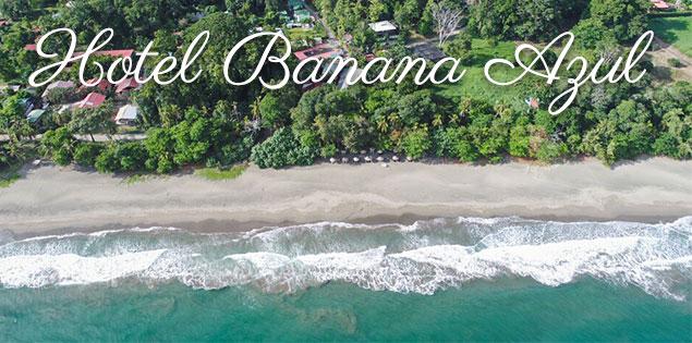 hotel banana azul featured