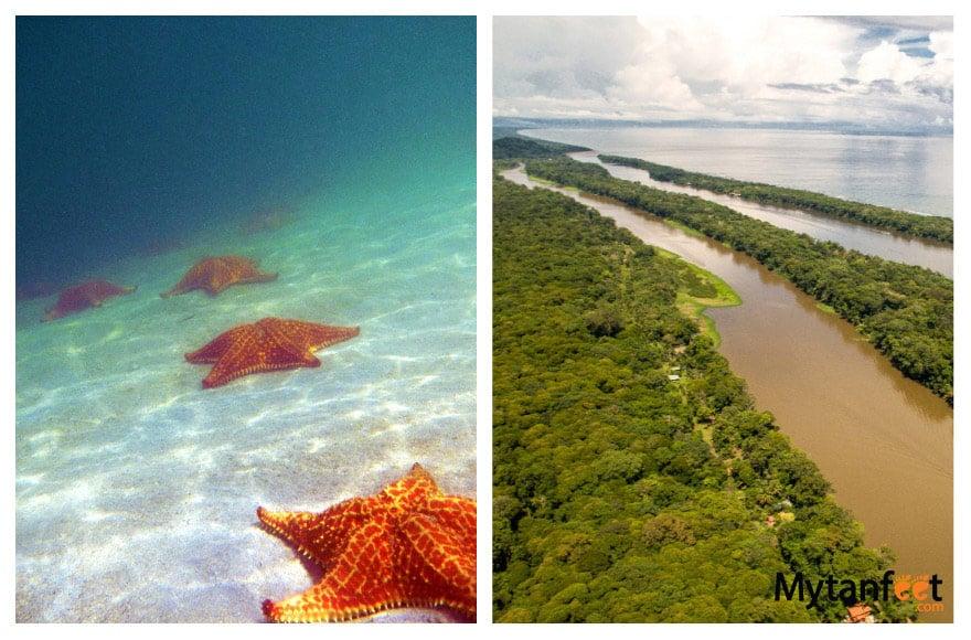 Bocas del Toro, Panama and Tortuguero National Park