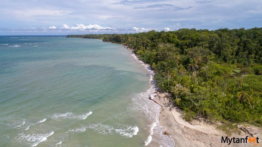 Things to do in Puerto Viejo de Talamanca - Cahuita National Park