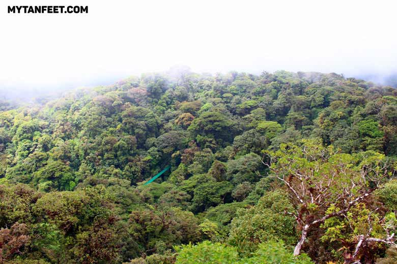 Best places in Costa Rica for first time visitors - Monteverde and Santa Elena