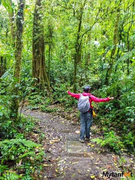 Santa Elena Cloud Forest trails