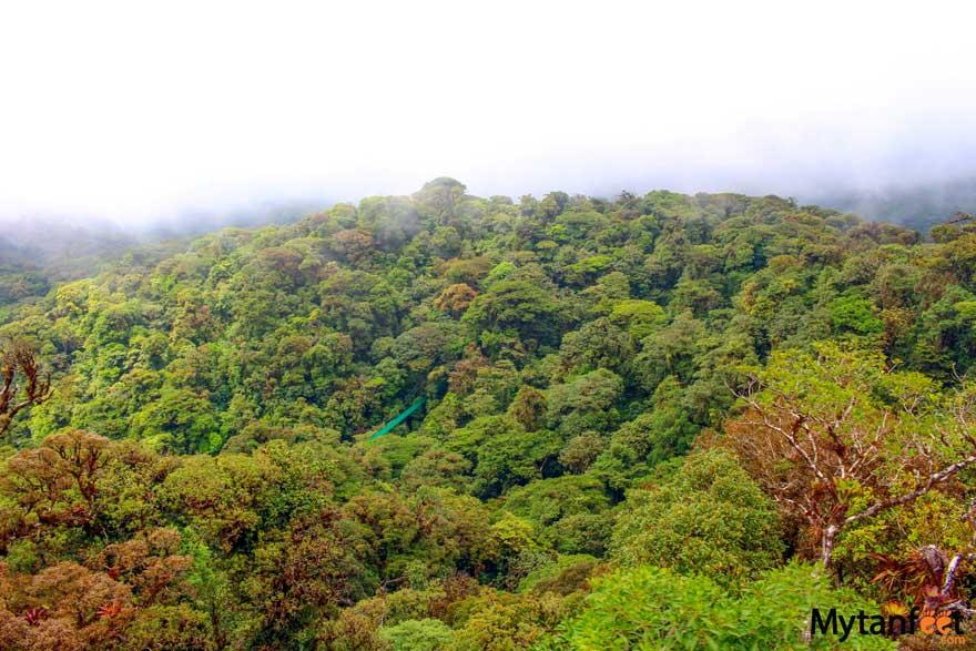 Best hostels in Costa Rica - Monteverde