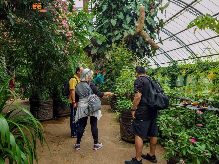La Paz waterfall gardens - animal sanctuary