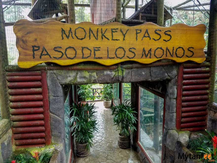 la paz waterfall gardens animal sanctuary