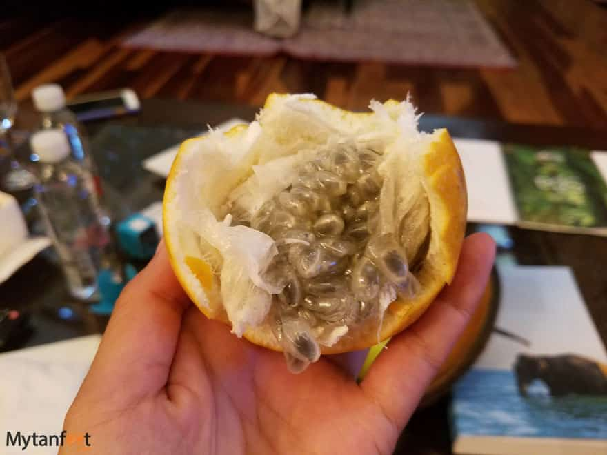 Costa Rica fruit - Granadilla