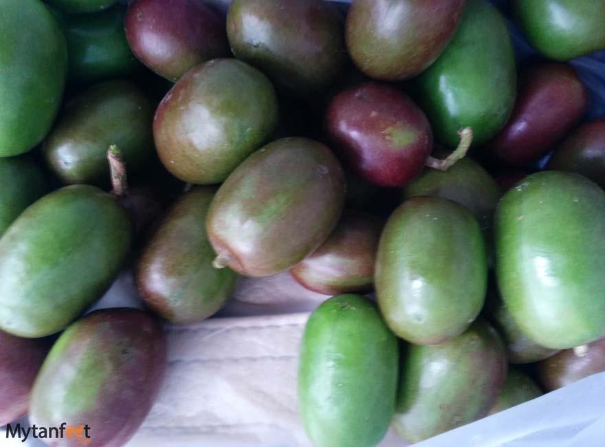 Costa Rica fruit jocotes