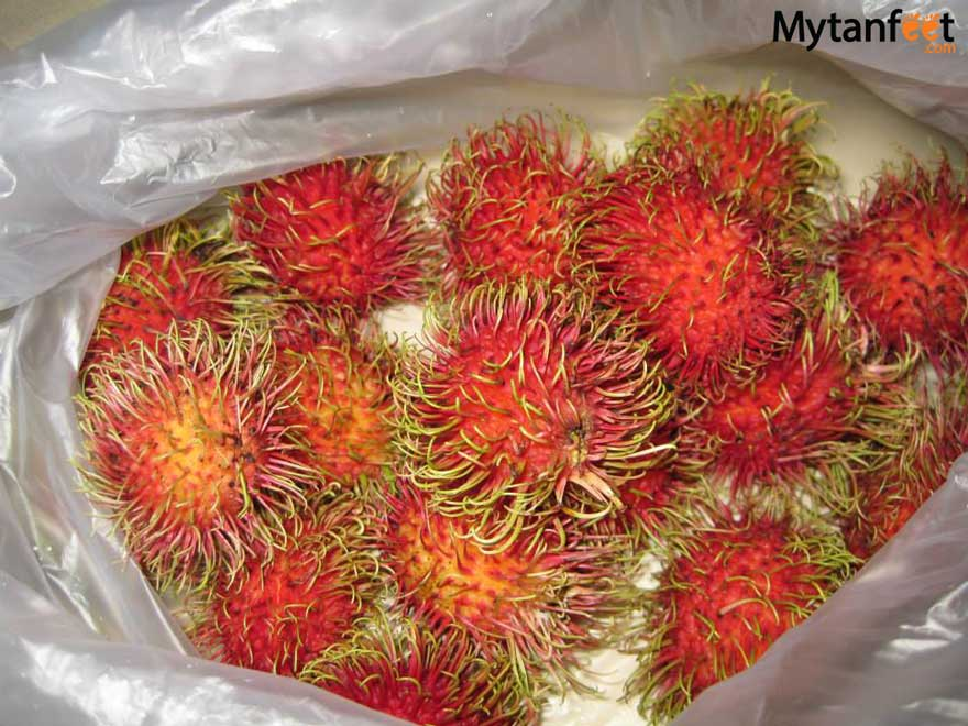 Costa Rica fruit rambutan