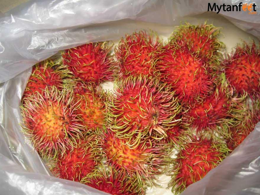 Costa Rica fruit rambutan