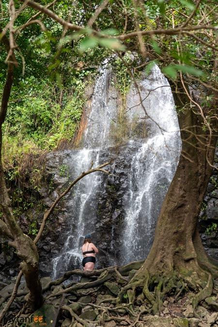 Seasonal waterfall