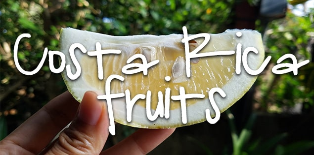 costa rican fruits featured