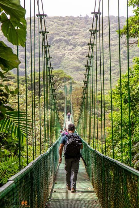Hanging bridges in Selvatura Park, Monteverde, Costa Rica
