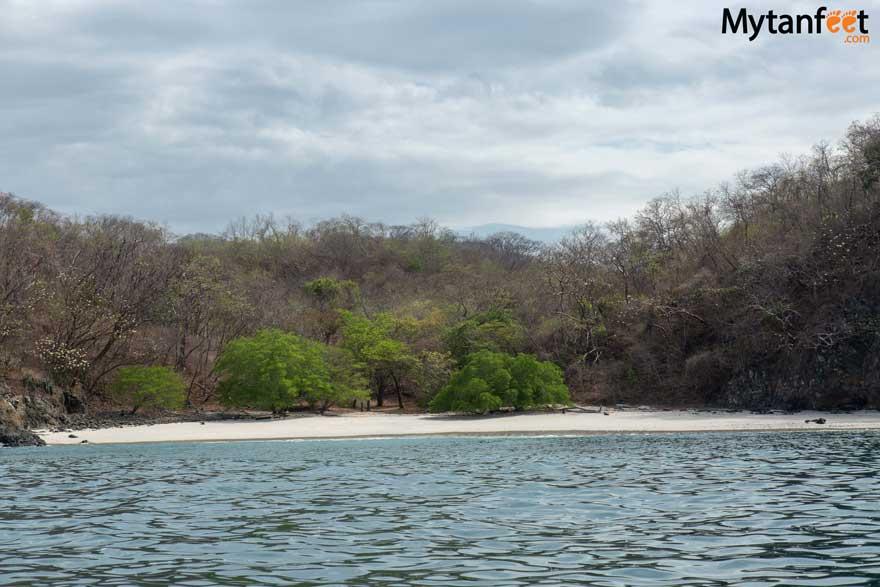 Private flamingo snorkeling excursions - Playa Amor