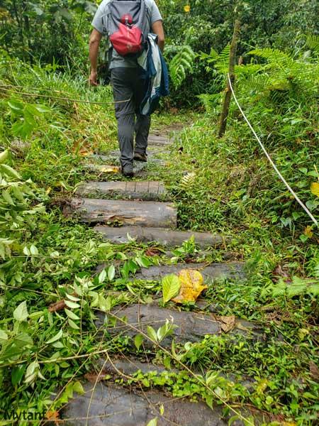 Catarata Rio Agrio trail