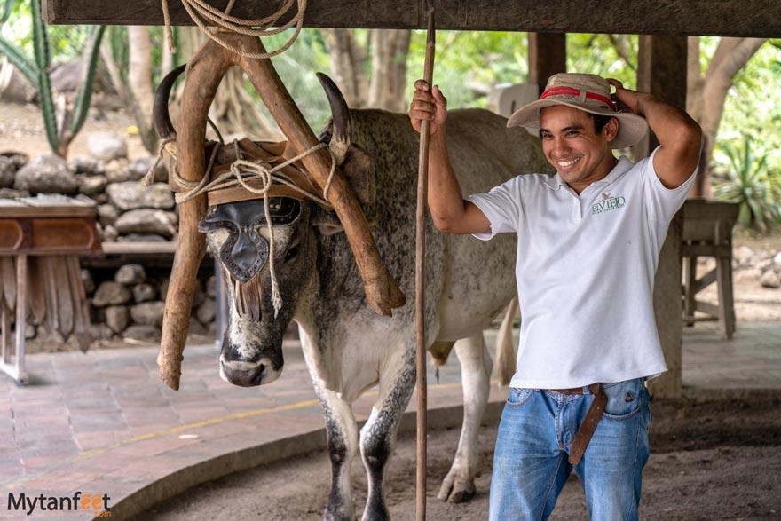 Hacienda El Viejo wetlands cultural tour