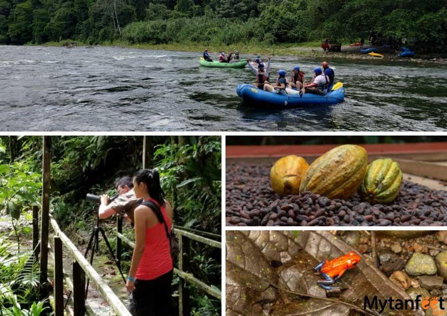 Things to do in Sarapiqui, Costa Rica