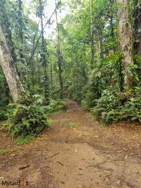 catarata poza azul trail