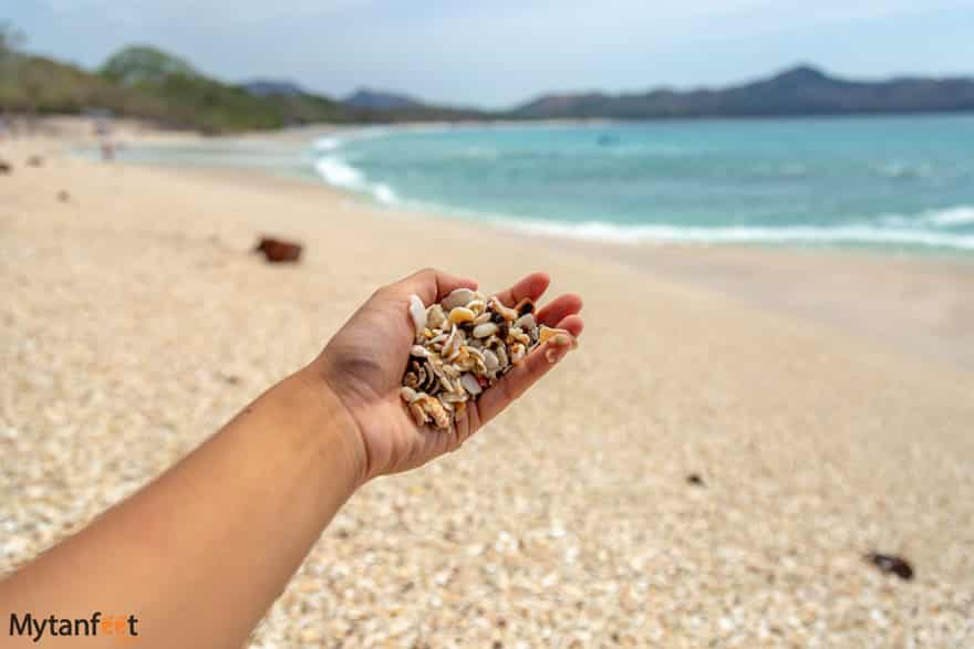 do's and dont's of costa rica - take shells